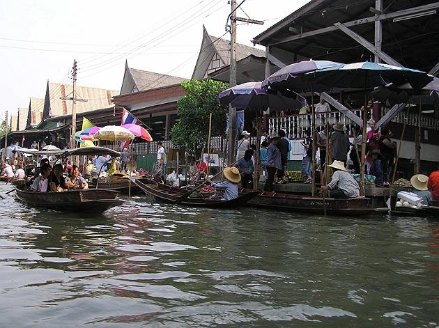 Pitkähäntäveneet